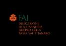 Logo FAI-BVT